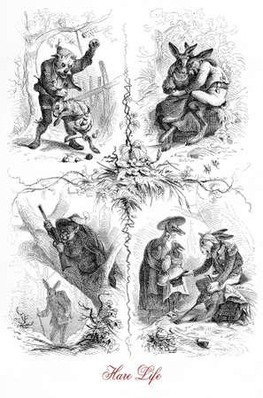 Vida de la liebre, caricaturas y viñetas en forma de cuento de la fatia, siglo XIX Foto de archivo