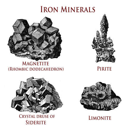 vintage illustration of iron minerals:magnetite, pirite, siderite, limonite