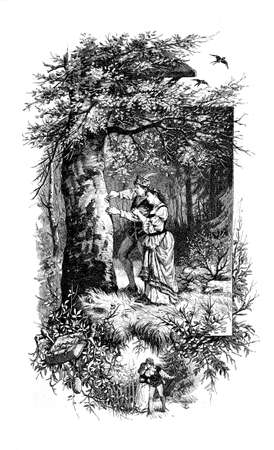 Romantic autumnal love, young couple carve a heart on a tree trunk in the woods