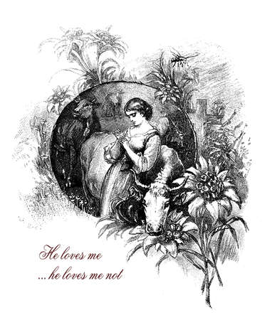He loves me...he loves me not, girl with edelweiss, romantic vintage engraving Stock Photo