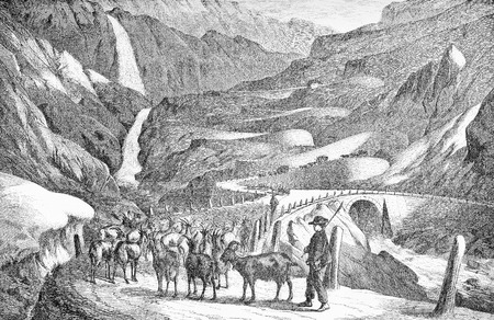 Val Tremola,Switzerland:  the old road to the Gotthard Pass in Canton Ticino built in 1827 -1832 with supporting walls and granite paving, old print with cattle and farmers