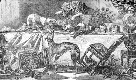 Dog team party on a dining table plenty of enough goodies to fill them up, and turning the room upside down, vintage engraving
