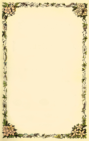 Vintage typographic page decoration, floral frame with blossoms, bees and spiders in delicate colors