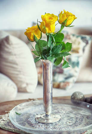 Yellow blossoms of rose in a silver vase, interior still life, soft focus with blurred background