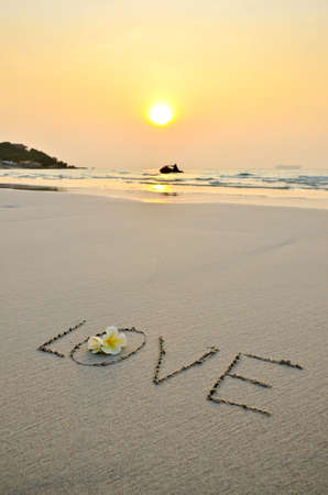 evoking: handwritten wording love in sand on the beach and flower in sunset