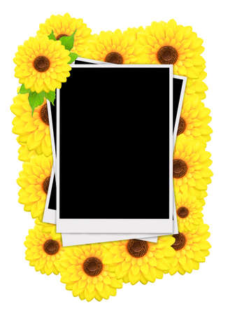 confines: Empty instant photos and sunflowers on white background