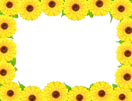 Rectangular frame made of sunflowers around a blank white space. photo