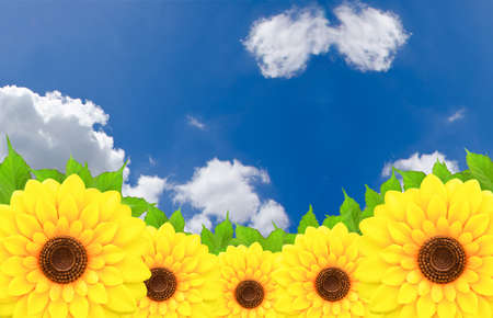 wellbeeing: Sunflower and leaves with blue sky Stock Photo