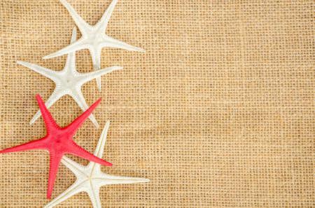 fish star: pescados de la estrella de la luz textura lino natural para el fondo