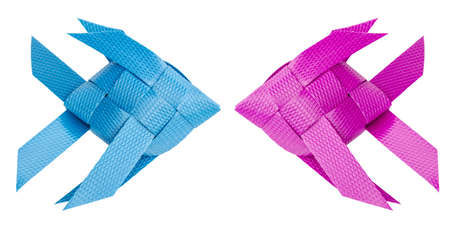 plastic recycle to fish weave for kids toy. isolated on white background. clipping path.