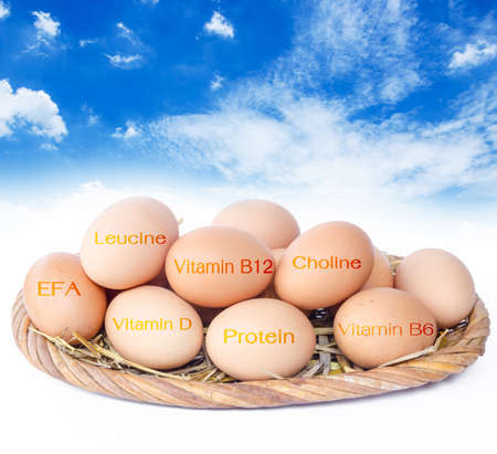 weight control: The nutrients in eggs for weight control.