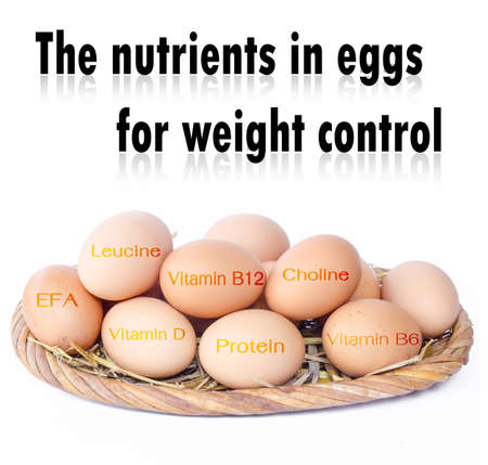 weight control: The nutrients in eggs for weight control. On background.