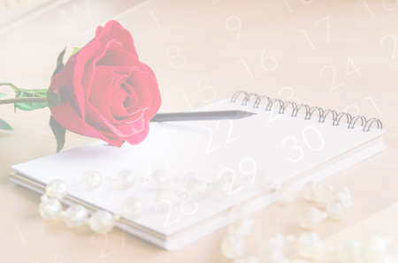 background calendar: vintage style of red rose and diary fade on calendar background. Stock Photo