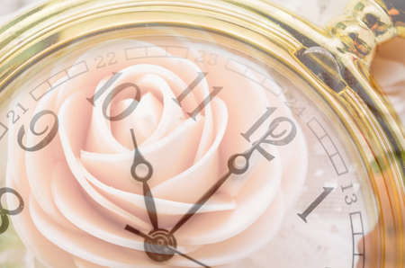 Still: Composite of pink Roses and Clock. Love and time concept.