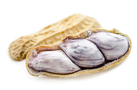 jhy: The Closeup of boil peanut thai style on white background