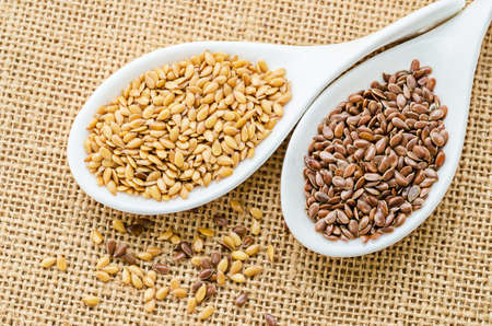 lipoprotein: Difference of Golden linseeds and brown linseeds (flax seeds) in wooden spoon on sack background.