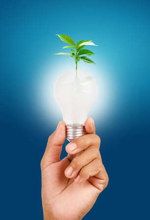 sustainable resources: Sustainable resources, renewable energy and environmental conservation concept.