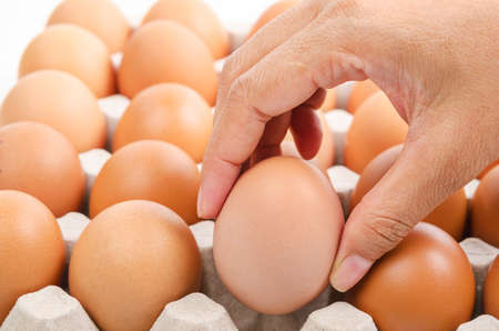 Person choosing the best egg from a carton of eggs. Stock Photo