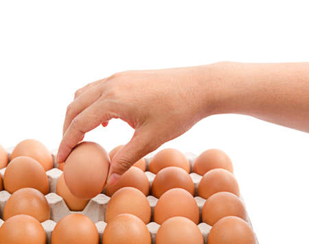 Person choosing the best egg from a carton of eggs isolated on white