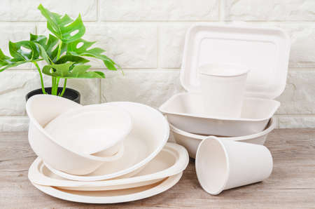 Eco-friendly biodegradable paper dishes and glass on wooden background.