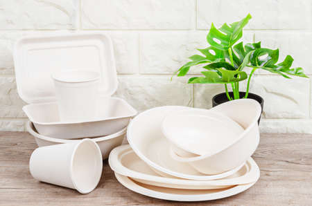 Eco friendly biodegradable paper dishes and glass on wooden background.