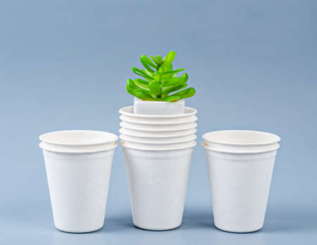 Biodegradable glass of water and plant. Eco friendly concept. Banco de Imagens