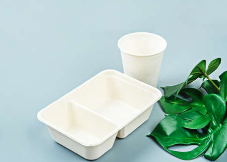 Unbleached plant fiber food box and paper cup with green leaves. Natural fiber eco food and drink packaging.