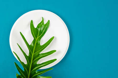 Biodegradable dish dispoable and green leave on blue background. eco friendly concept.