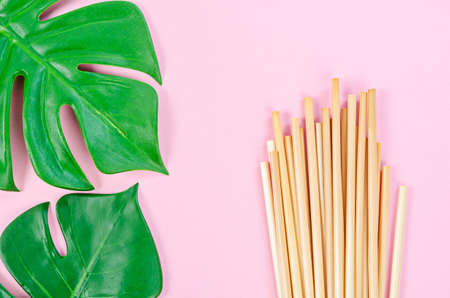 Wheat straw for drinking water with green leaves on pink background. Zero waste concept.