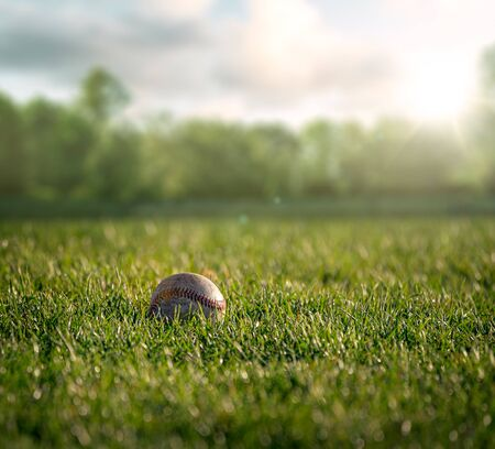 Baseball ball lays in the grass at the ballpark in the season
