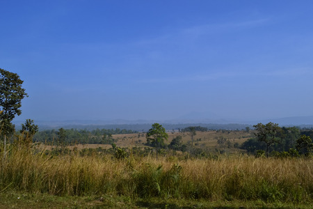 nationalpark: Savanna landscape and its flora in Thailand, Phetchabun, Salangluang Nationalpark