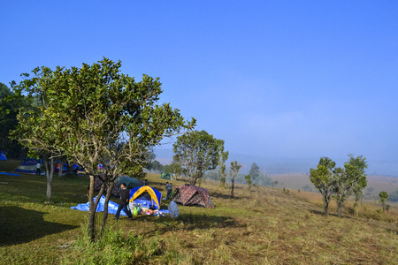 nationalpark: Camping in Savanna landscape and its flora in Thailand, Phetchabun, Salangluang Nationalpark