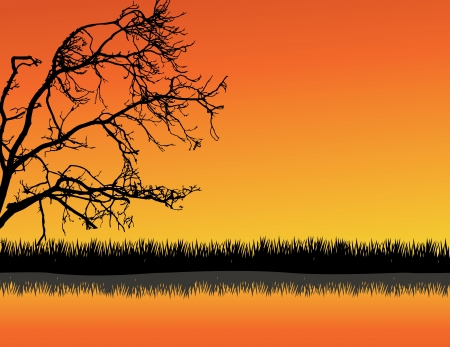 horizon reflection: vector illustration of Tree Silhouette With Grass