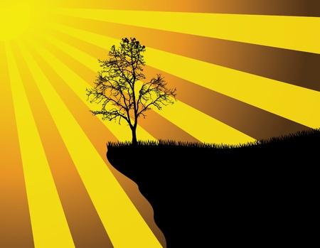 precipice: vector illustration of Tree Silhouette