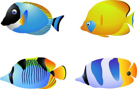 vector illustration of Tropical fish collection Vector
