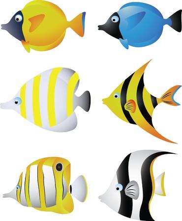 peces de agua salada: ilustraci�n vectorial de la colecci�n de peces tropicales
