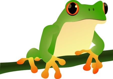 vector illustration of cartoon illustration of a frog sitting  Illustration
