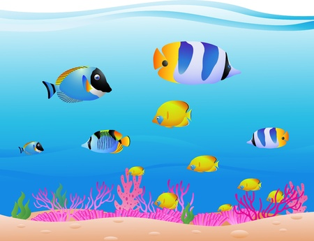 vector illustration of Tropical Fish