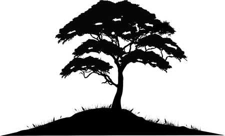 nature one painted: vector illustration of Tree Silhouette