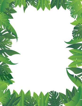 tropical border: vector illustration of Tropical Leaf Background