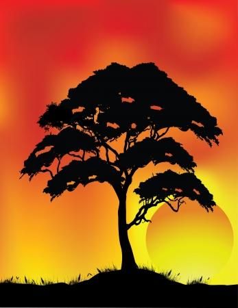 morning walk: vector illustration of Tree Silhouette