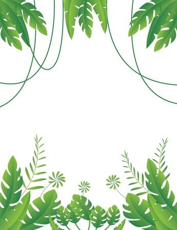 yeşillik: Tropikal Yaprak Arka Plan Vekt Çizim