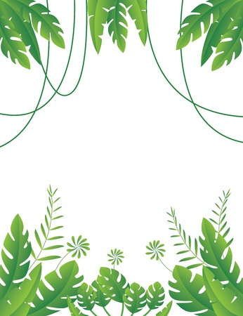 mystical forest: Vector Illustration of Tropical Leaf Background