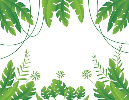 natural vegetation: Vector Illustration of Tropical Leaf Background