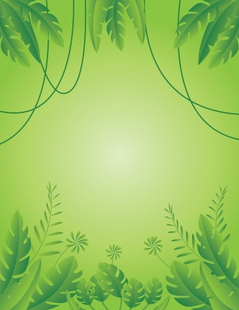 Vector Illustration of Tropical Leaf Background  Stock Vector - 14805509