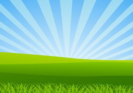 vector illustration of Nature Landscape