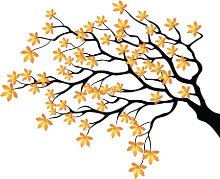 jarzębina: ilustracji wektorowych Jesienne gałęzi Ilustracja