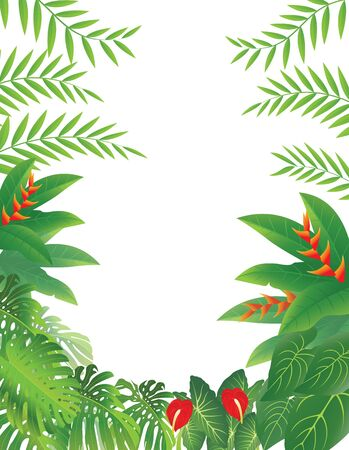 vector illustration of Tropical Forest Background Stock Vector - 14805685