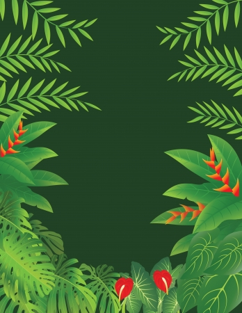 amazon forest: vector illustration of Tropical Forest Background