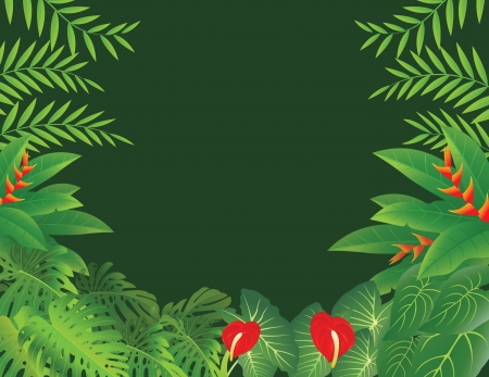 vector illustration of Tropical Forest Background Stock Vector - 14805687